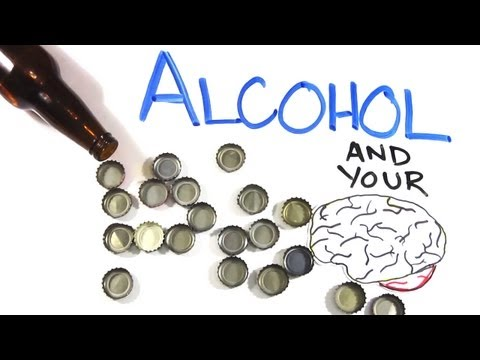 Your Brain on Alcohol