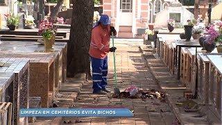 Moradores de Bauru reclamam da sujeira nos cemitérios
