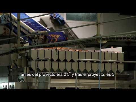 Proyecto COOL-SAVE - Eficiencia energética en sistemas de enfriamiento industrial