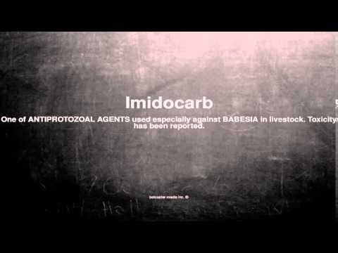 Medical vocabulary: What does Imidocarb mean
