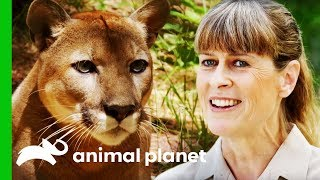 Terri Irwin Visits A Wildlife Sanctuary Very Close To Her Heart | Crikey! It's The Irwins by Animal Planet