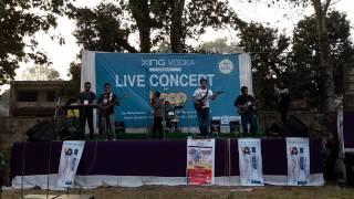 Teri dewani By Panam Band Pathalaiya