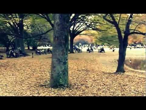 Tokyo  - Yoyogi Park 代々木公園 DIY Video Stabilizer ステディカム Kodak Zi8