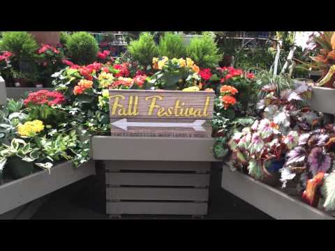 Homestead Gardens Fall Fest
