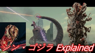 Video Shin Gojira's Tail Explained (シン・ゴジラ ) MP3, 3GP, MP4, WEBM, AVI, FLV Juni 2019