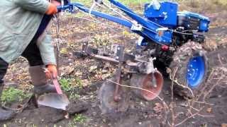 Мотоблок ZUBR JR-Q12E. Первая после обкаточная работа, выкопка саженцев винограда.