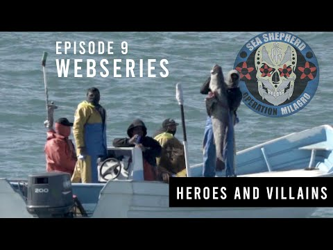 Operation Milagro VI Web Series - Episode 9: Heroes and Villains