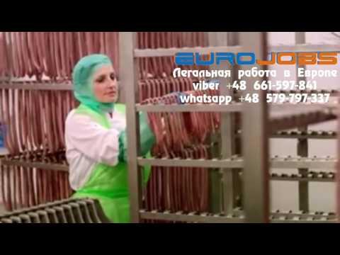 Производство продукции для маркетов LIDL EuroJobs