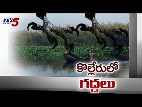 Operation Kolleru | Forest Officers Destroyed Lake : TV5 News