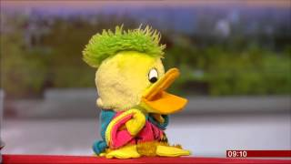 Former BBC Children's presenter Andy Crane and his protégé Edd the Duck, back together on BBC Breakfast 9.9.2015