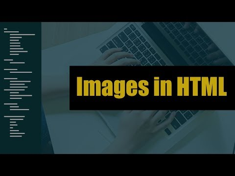 Using Images in HTML | Eduonix