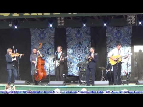 Steep Canyon Rangers - Suwannee Springfest - Live Oak, Fl  3- 21- 2014