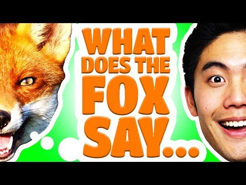 Say - What I have to say about what the fox is saying about what he says... But really, I recorded this on garageband.. Big Thank you to Andy Lange for helping wit...
