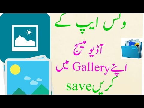 How To Whatsapp Audio Message Save To Gallery And Hindi Urdu