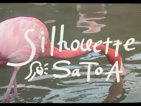 , title : 'SaToA   silhouette  MV'