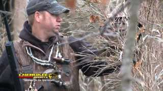Babes In The Hole - Green Timber Duck Hunting
