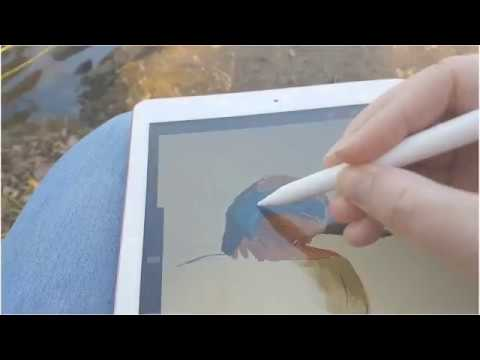 Digital painting birds outside