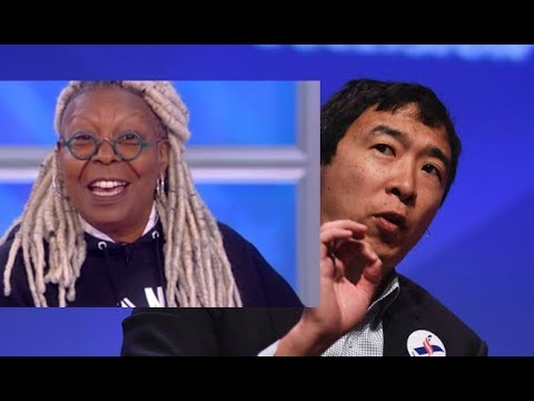 Complete List of Andrew Yang Celebrity Campaign Endorsements for President 2020