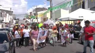 Carnaval da AMO 2014