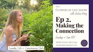 The Flower of Life Show With Selena Wong by Bubbleman's World