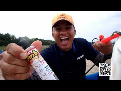 Casting Ikan Siakap 101 Teknik Gila power bait matsumoto
