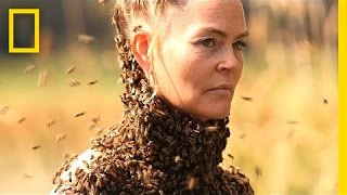 Video She Dances With 10,000 Bees on Her Body   National Geographic MP3, 3GP, MP4, WEBM, AVI, FLV Maret 2019