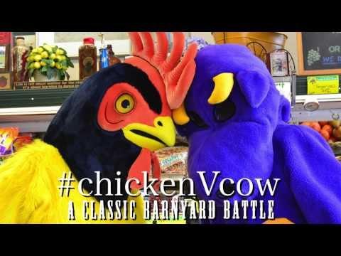#chickenVcow