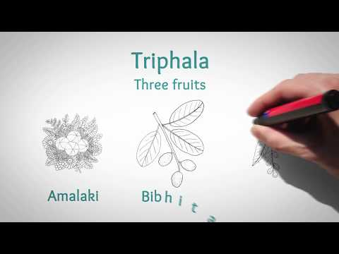 Savesta Triphala for Healthy Digestion