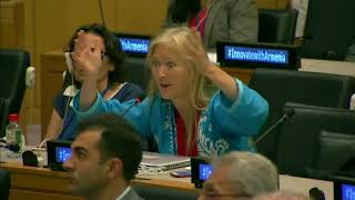 Sascha Gabizon's Q&A: Side Event: Innovation at the HLPF 2018: UN Web TV