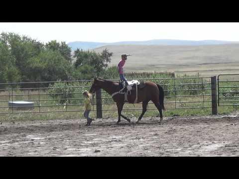 Payton coaching her future trick riding partner?