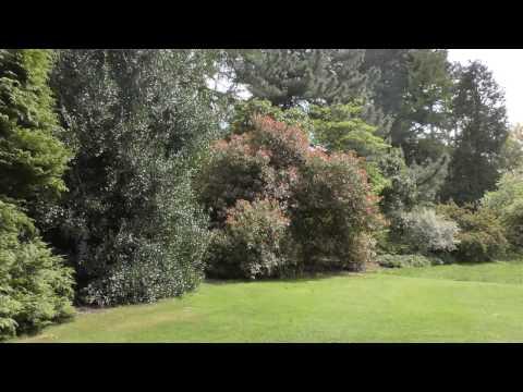 SAVILL GARDEN - EGHAM , WINDSOR  16/04/17