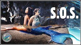 "Video Life as a Mermaid ▷ Season 4 | Episode 1 - ""S.O.S."" MP3, 3GP, MP4, WEBM, AVI, FLV November 2018"