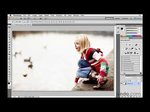 What is Adobe Bridge? | lynda.com overview