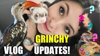 GRINCHY Updates! (Taming, Feeding and Progress) | Painting Myself | Vlog by Emzotic