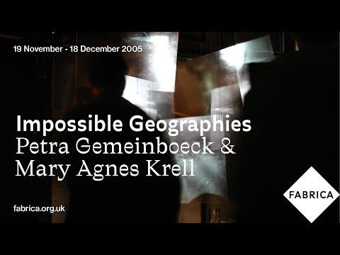 artist interview video