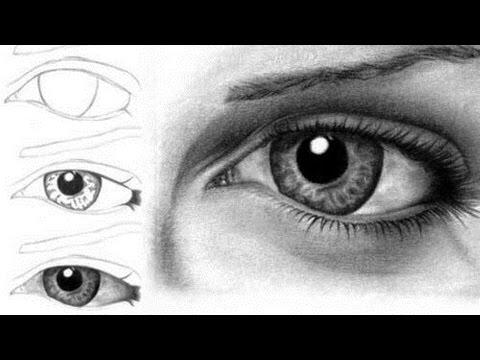 Как просто нарисовать глаз человека