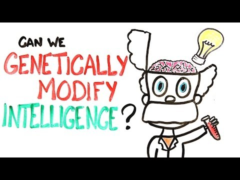 Can We Genetically Improve Intelligence