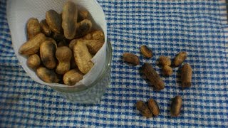 Roast fresh peanuts along with the shell and enjoy. Directly roasted peanut seeds taste different than the peanuts that are roasted along with the shell. try this and enjoy.