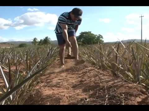 Poço Artesiano construído pelo Governo de PE em Riacho das Almas não esta funcionando.