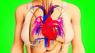 Video Kalp Krizinden Bir Ay Önce Vücudunuz Sizi Böyle Uyarır MP3, 3GP, MP4, WEBM, AVI, FLV November 2018