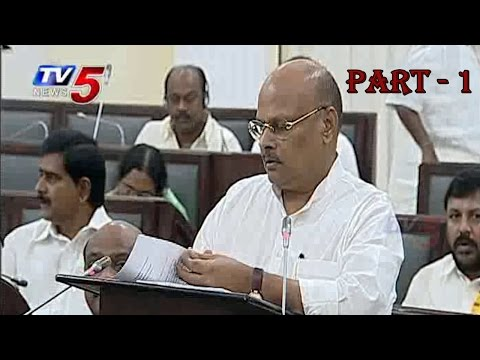Yanamala to introduce 2014 Budget in AP Assembly | Part 1 : TV5 News
