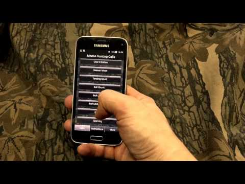 Video of Moose Hunting Calls