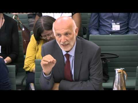 Prof.Peter Fonagy, Clinical Director of Mental Health for NHS England chairs a Youth Select Committee report on Mental Health.