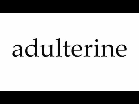How to Pronounce adulterine