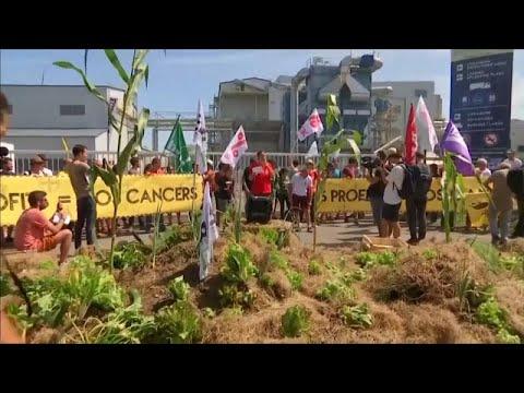 Frankreich: Proteste gegen Monsanto in Peyrehorade