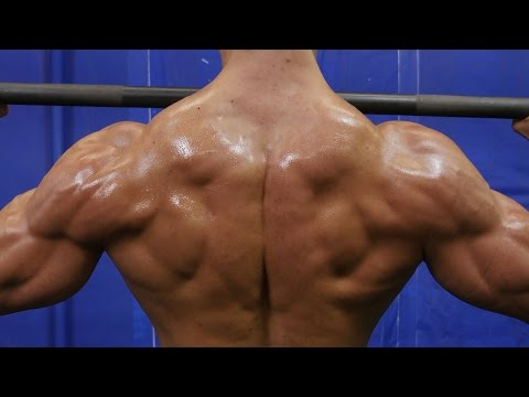 Back - Build Muscle Fast : http://sixpackshortcuts.com/rdgq In today's video, we are going to do an crazy back workout that is going to add some serious size to you...