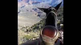 Mule ride to Phantom Ranch/Colorado River, Grand Canyon. Mules go down using the Bright Angel trail, up the South Kaibab ...