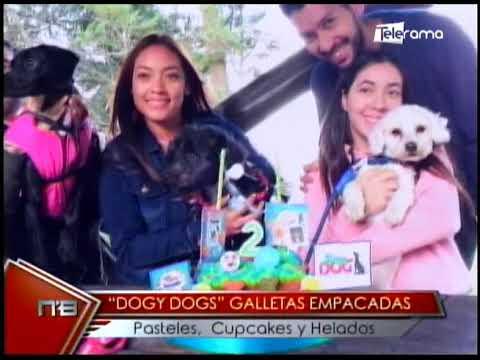 Dogy Dogs galletas empacadas pasteles, cupcakes y helados