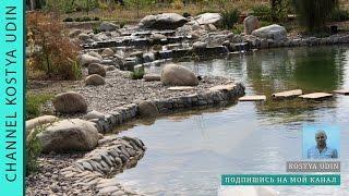 Плавательный пруд , экопруд (Ecological pond)