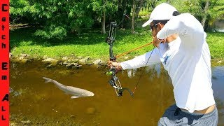 Video BOWFISHING for INVASIVE FISH with New HIGH-TECH BOW! MP3, 3GP, MP4, WEBM, AVI, FLV Juni 2019